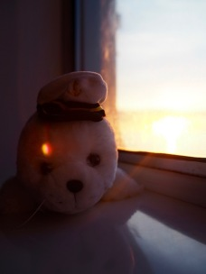 Harri Hylje auringonlaskussa