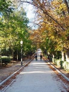 Parque El Retiro