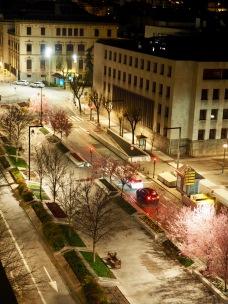 Kirsikkapuut yöllä katolta