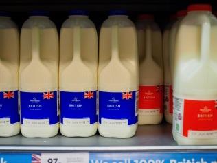 Tuoretta maitoa, ei formaldehydia!
