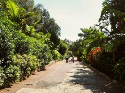 Pieni ja sympaattinen puisto