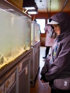 Akvaariotalossa